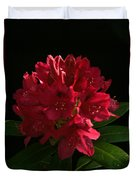 Rhododendron At Sunset 2 Duvet Cover