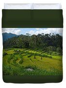Rice Fields In Agricultural Bali Duvet Cover