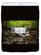 Ricketts Glen Waterfall Oneida Duvet Cover