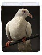 Ring-necked Dove Duvet Cover