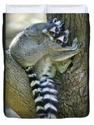 Ring-tailed Lemurs Madagascar Duvet Cover