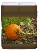 Ripe Pumpkin Duvet Cover