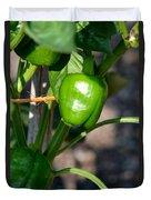 Ripened Peppers Duvet Cover