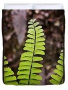Rising Fern 1 Duvet Cover