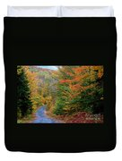 Road Through Autumn Woods Duvet Cover by Larry Landolfi and Photo Researchers