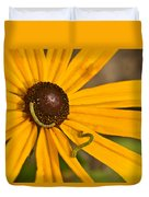 Roadside Daisy And Inch Worms Duvet Cover