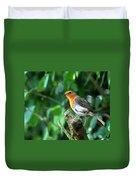 Robin 1 Duvet Cover