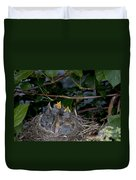 Robin Nestlings Duvet Cover by Ted Kinsman