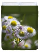 Robin's Plantain - Alabama Wildflowers Duvet Cover