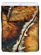 Rock Detail, Killarney Provincial Park Duvet Cover