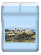 Rocks At Low Tide Iles Chausey Duvet Cover