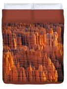 Rocky Canyon Duvet Cover