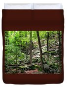 Rocky Forest Of Chatfield Duvet Cover