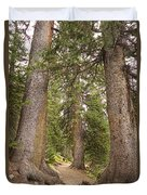 Rocky Mountain Forest Walk Duvet Cover