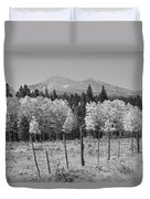 Rocky Mountain High Country Autumn Fall Foliage Scenic View Bw Duvet Cover