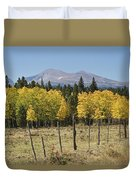 Rocky Mountain High Country Autumn Fall Foliage Scenic View Duvet Cover
