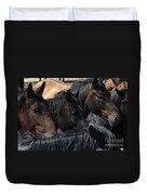 Rodeo Bucking Stock Duvet Cover