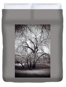 Roots And Flutes  Duvet Cover