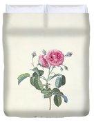 Rose Dutch Hundred Leaved Rose Duvet Cover