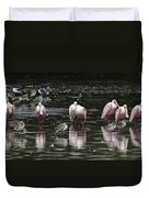 Roseate Reflections - Spoonbill Nature Scene Duvet Cover