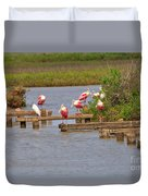 Roseate Spoonbills And Snowy Egrets Duvet Cover