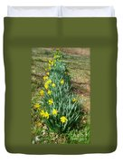Row Of Daffodils Duvet Cover