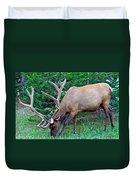 Royal Bull Elk Duvet Cover