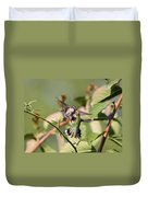 Ruby-throated Hummingbird - An Altercation Duvet Cover