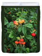 Rugosa Rose With Rose Hips Duvet Cover