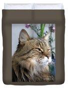 Runcius- My King Kitty Enjoying The Sunshine Duvet Cover