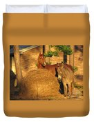 Rusty And Brown Sugar Duvet Cover