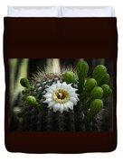 Saguaro Cactus Blooms  Duvet Cover