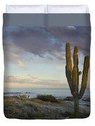 Saguaro Carnegiea Gigantea Cactus Duvet Cover