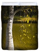 Salmon During The Fall Migration In The Little Manistee River In Michigan No. 0887 Duvet Cover