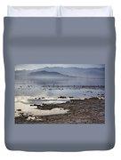 Salton Sea Birds Duvet Cover