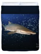 Sand Tiger Shark Off The Coast Of North Duvet Cover