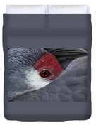 Sandhill Crane At Rest Duvet Cover