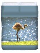Sandhill Crane Daydreamer Duvet Cover