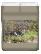 Sandhill Cranes In Colorful Marsh Duvet Cover