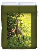 Sandhill Toddler Duvet Cover