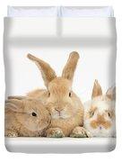 Sandy Rabbit And Babies Duvet Cover