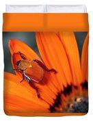 Scarab Beetle On A Guzmania Flower Duvet Cover