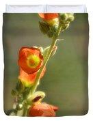 Scarlet Globe-mallow Duvet Cover