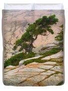 Schoodic Cliffs Duvet Cover