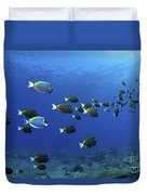 School Of Surgeonfish, Christmas Duvet Cover