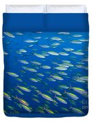 School Of Wide-band Fusilier Fish Duvet Cover