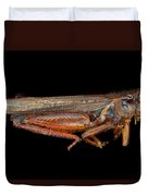 Science - Entomology - The Specimin Duvet Cover