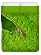 Scorpion Fly Nosing Around Duvet Cover