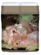 Scorpionfish, Indonesia Duvet Cover