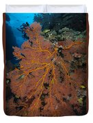 Sea Fan, Fiji Duvet Cover